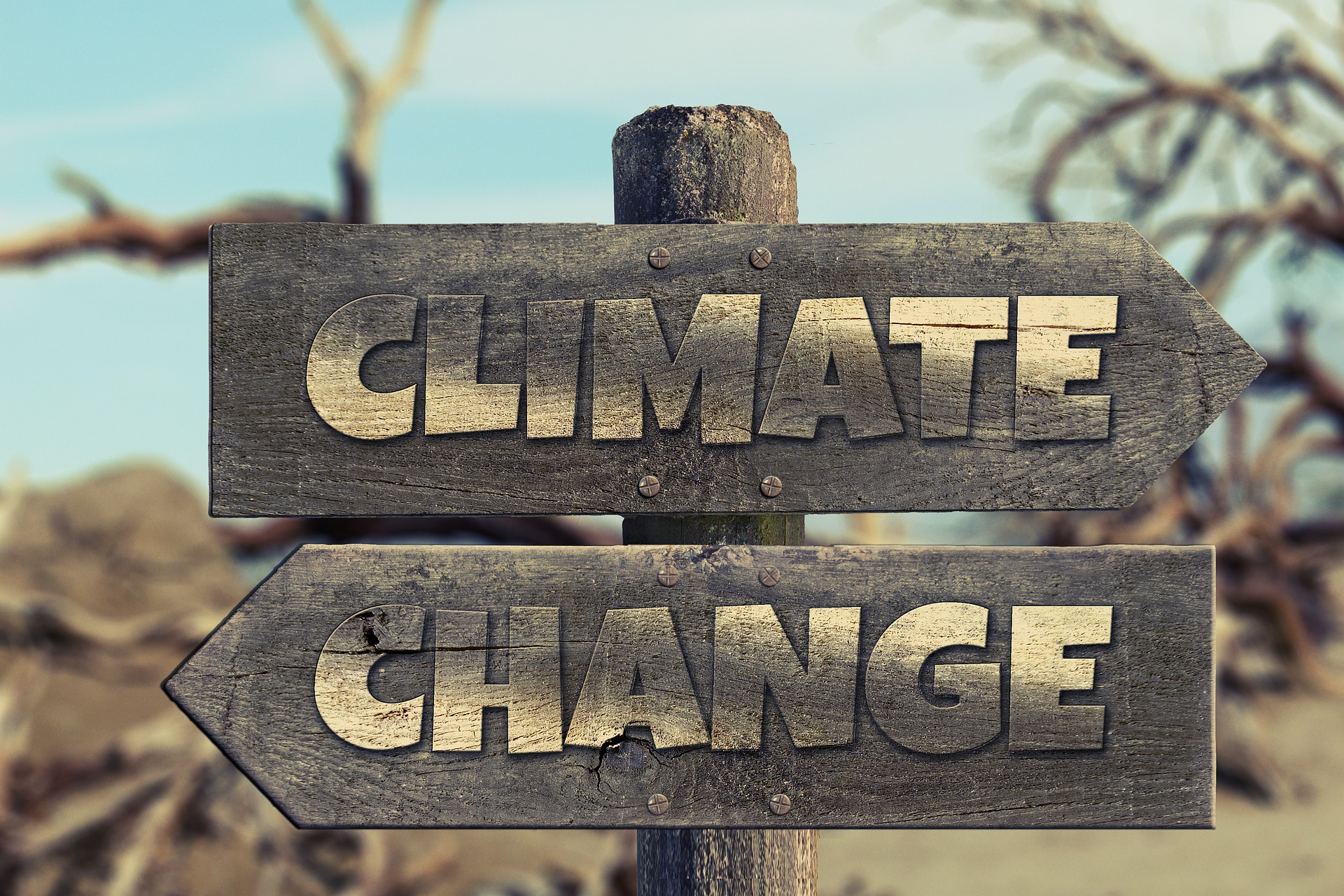 Change your Climate