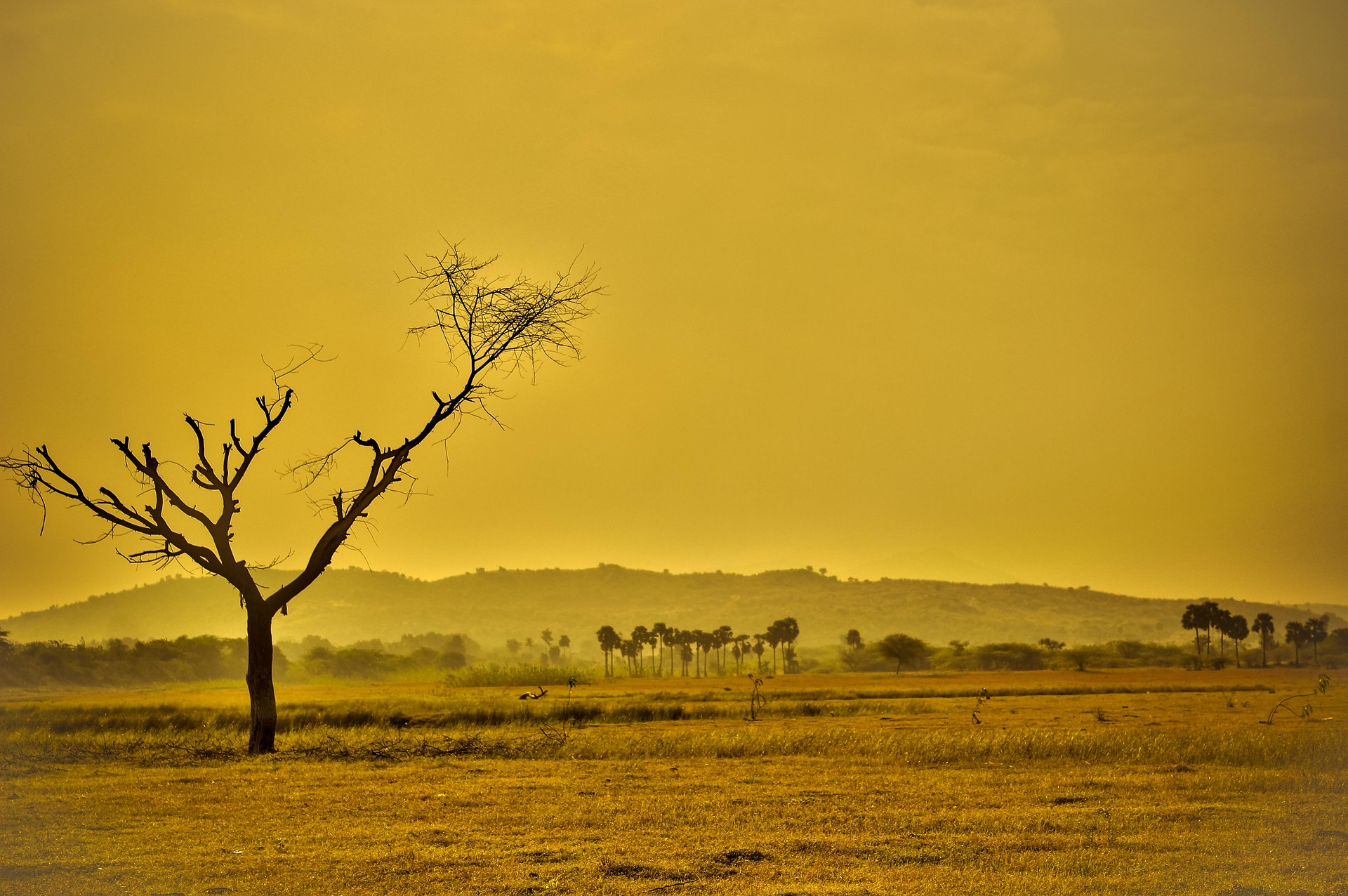Hot and Dry environment